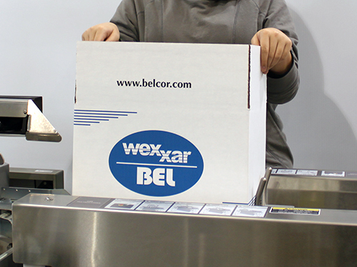 BEL Case Erectors & Case Sealers