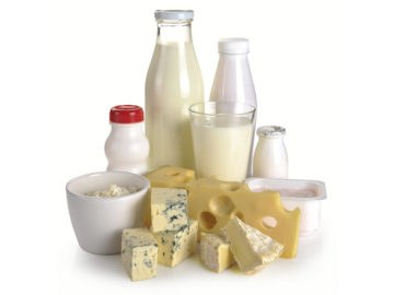 Dairy Products Industry Wexxar Ipak