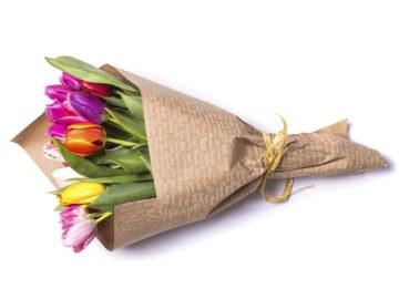 Floriculture Cut Flower Industry Wexxar Ipak